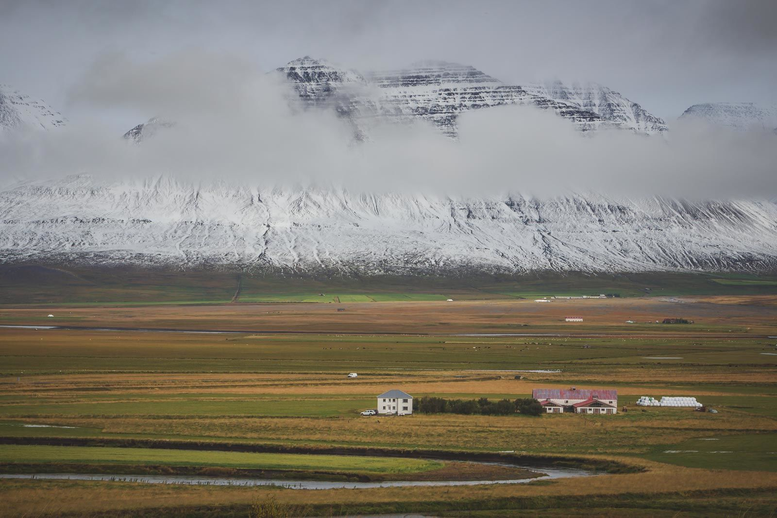 Iceland is scarce on trees