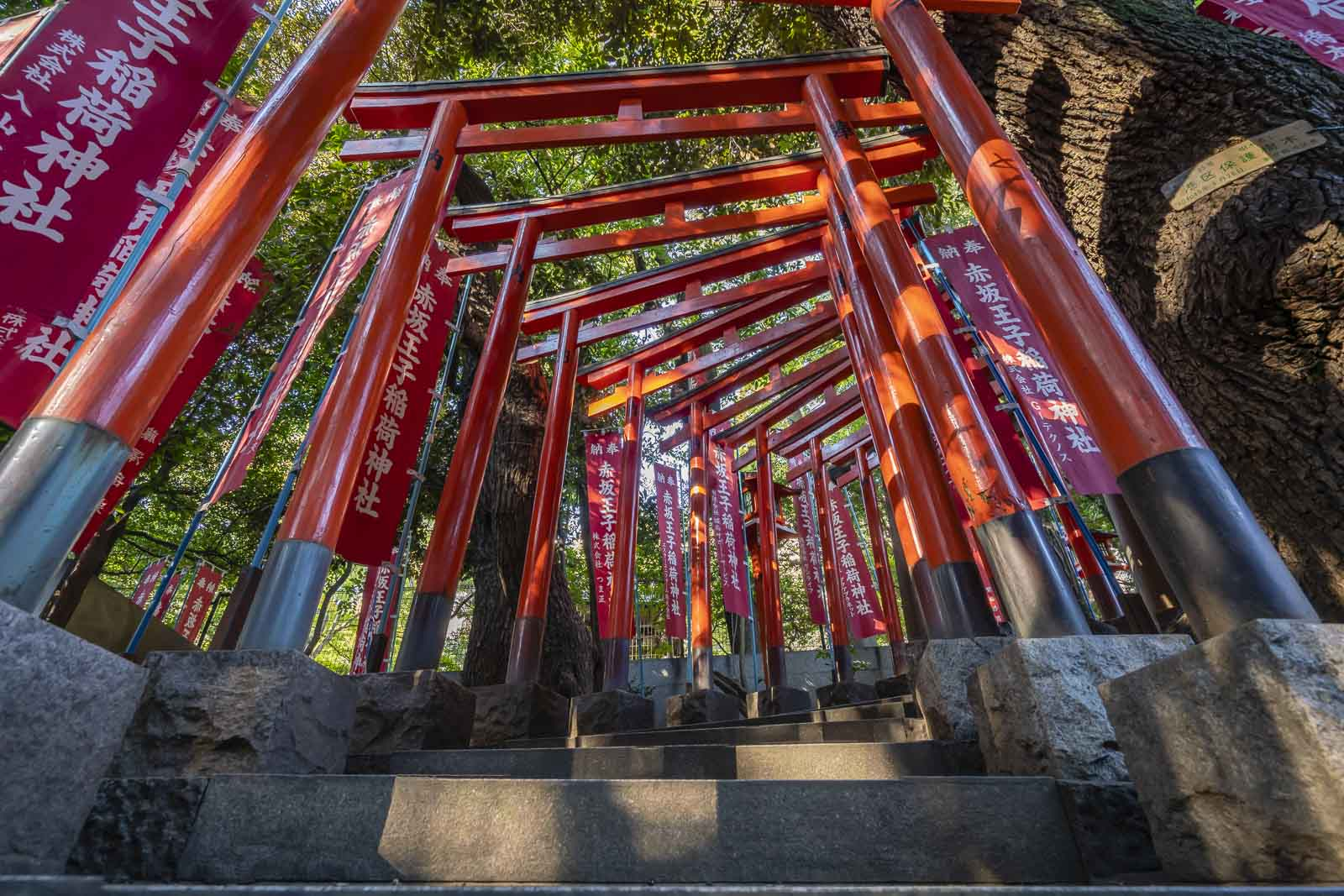 top things to do in tokyo nogi shrine