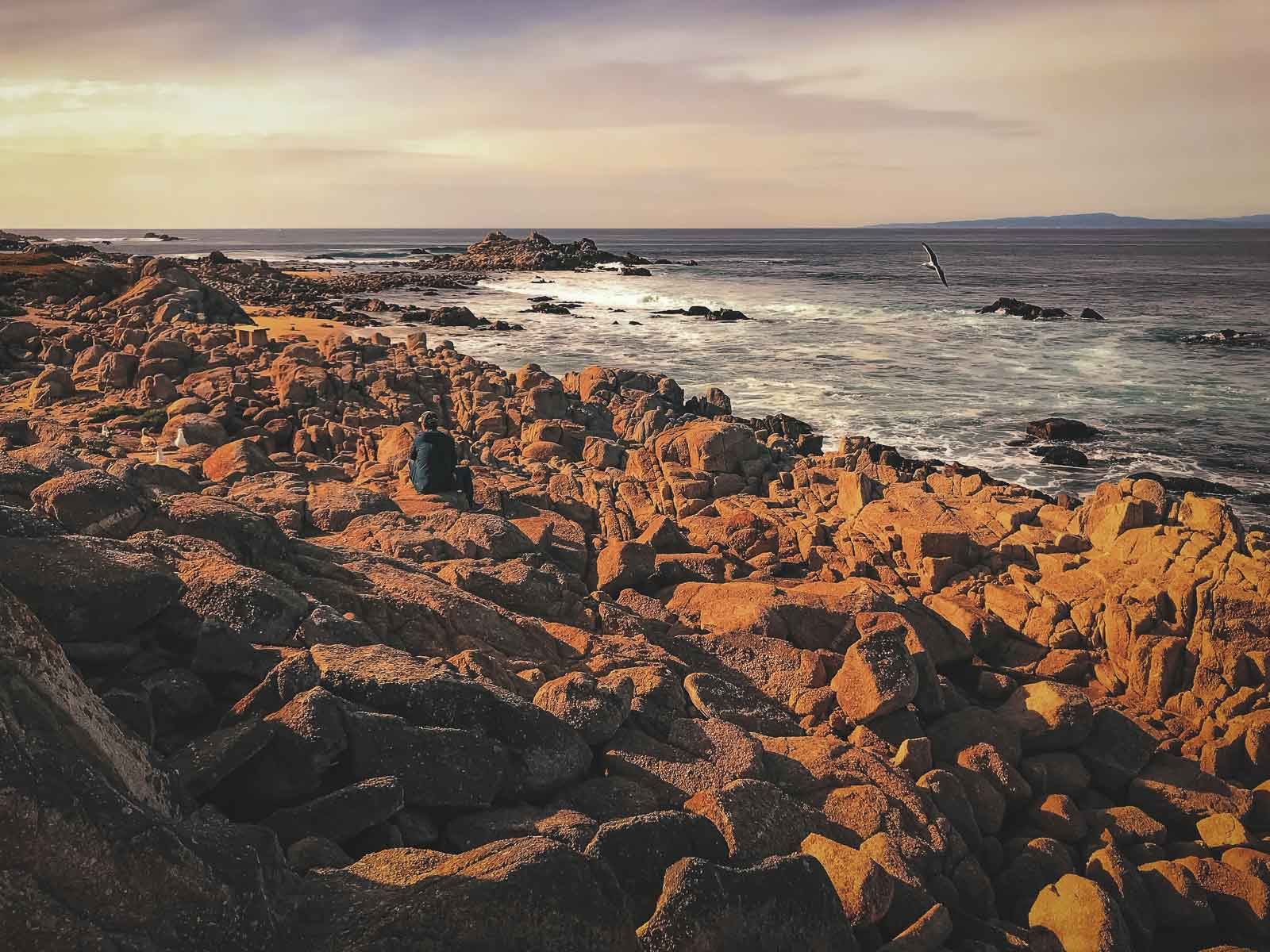 When to visit Carmel by the Sea California